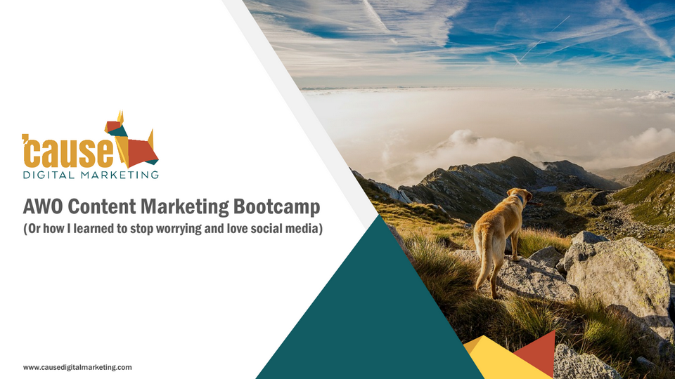 Animal Shelter and Rescue Content Marketing Bootcamp